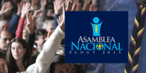 Asamblea Nacional 2015