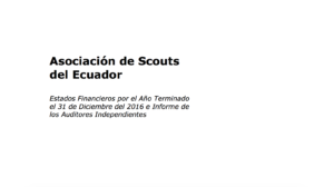 INFORME DE LOS AUDITORES INDEPENDIENTES
