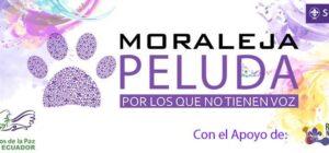 Moraleja Peluda 2017, Proyecto de Mensajeros de la Paz